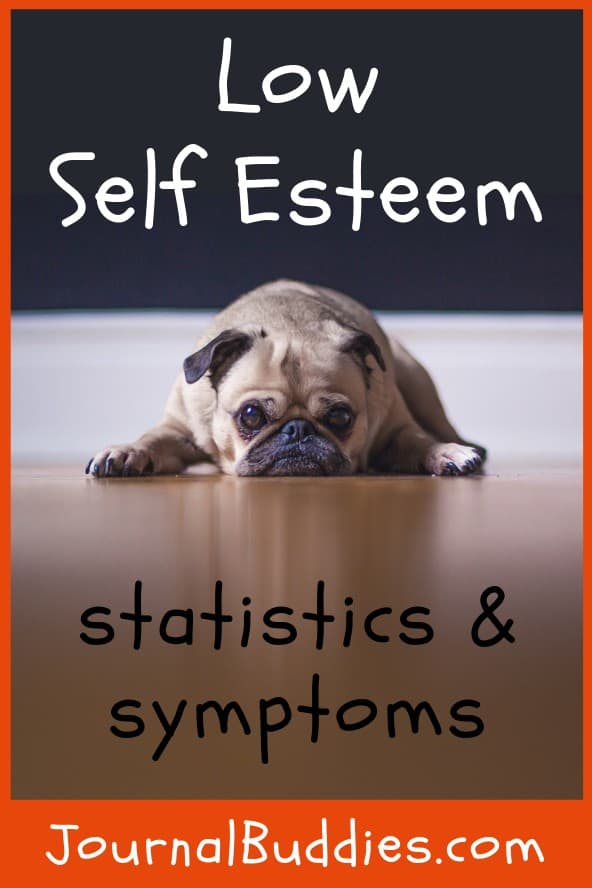 Insightful -- and even some shocking! -- statistics & symptoms of low self-esteem and confidence.