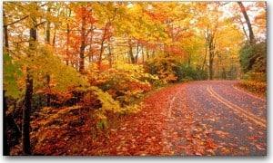 3 Fall Writing Ideas